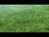 Yowamushi Pedal [ТВ-2] 03 / Трусливый велосипедист - 3 серия [русская озвучка Horie]
